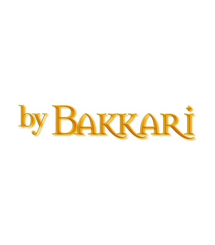 INFORMACION BAKKARI